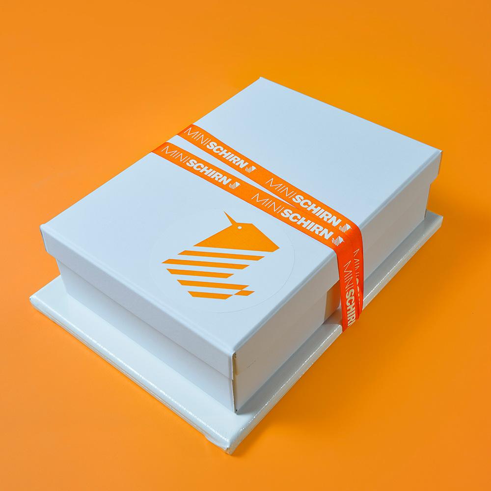 MINISCHIRN BOX. MALEN AUF LEINWAND