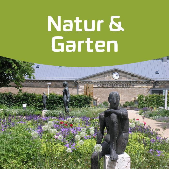 Erfurt blüht – die Sonderausstellung des Deutschen Gartenbaumuseums