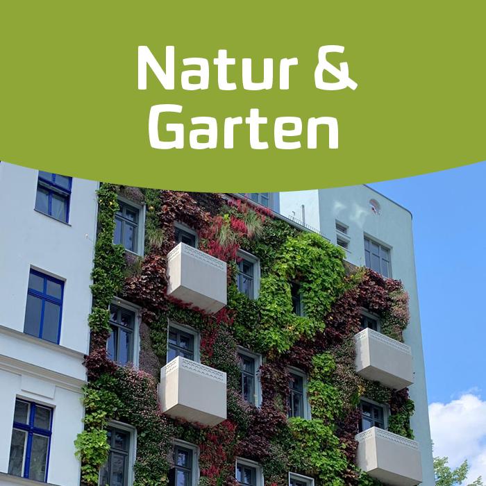 Urban Gardening: Gärtnern in der Stadt!