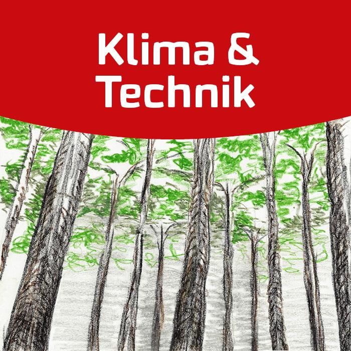 Es begann mit den Bäumen – Wurzeln der Nachhaltigkeit