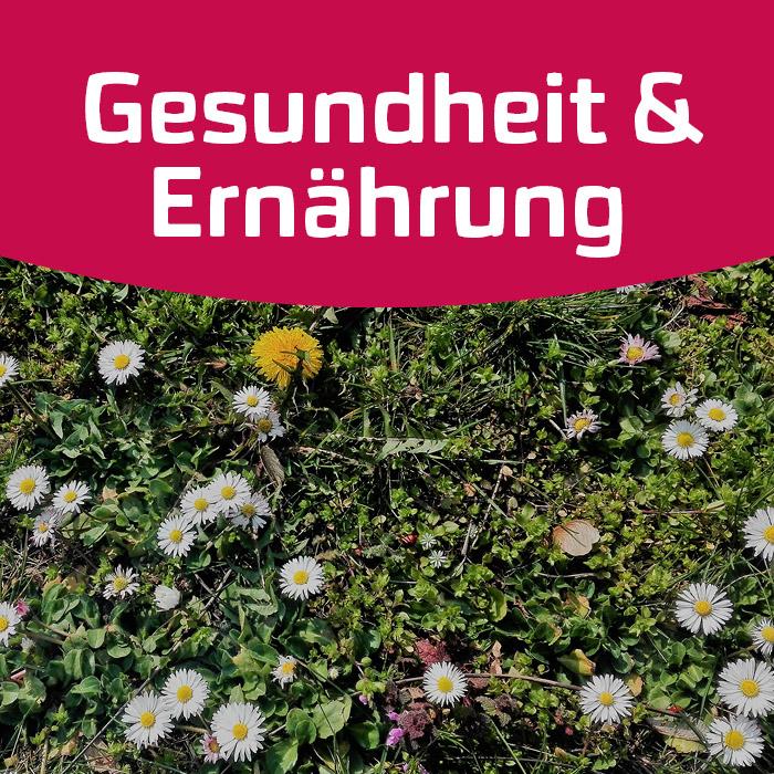Blütenküche: Gänseblümchen, Löwenzahn und ...