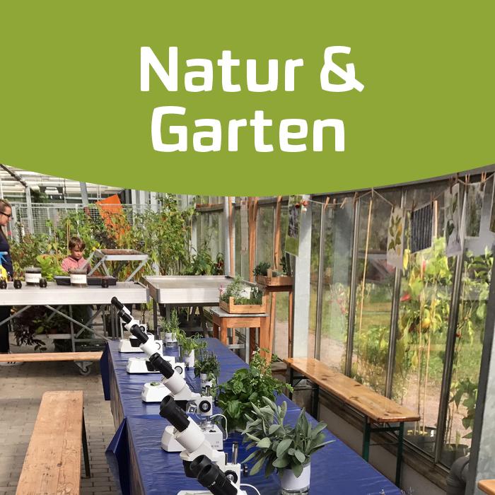 Von Klostergarten bis Urban Gardening – Kräuter früher und heute
