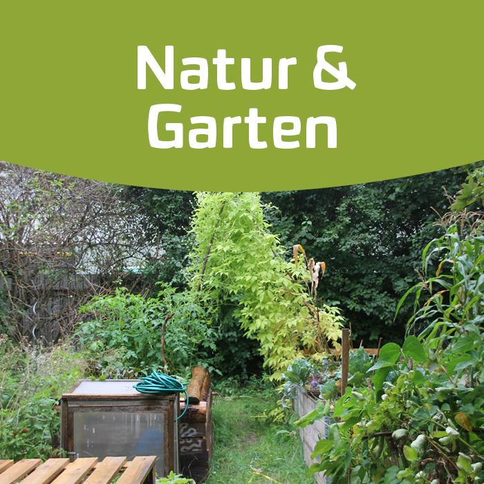 Mit Gärten deine Stadt verändern